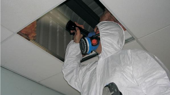 Asbestos Surveyor